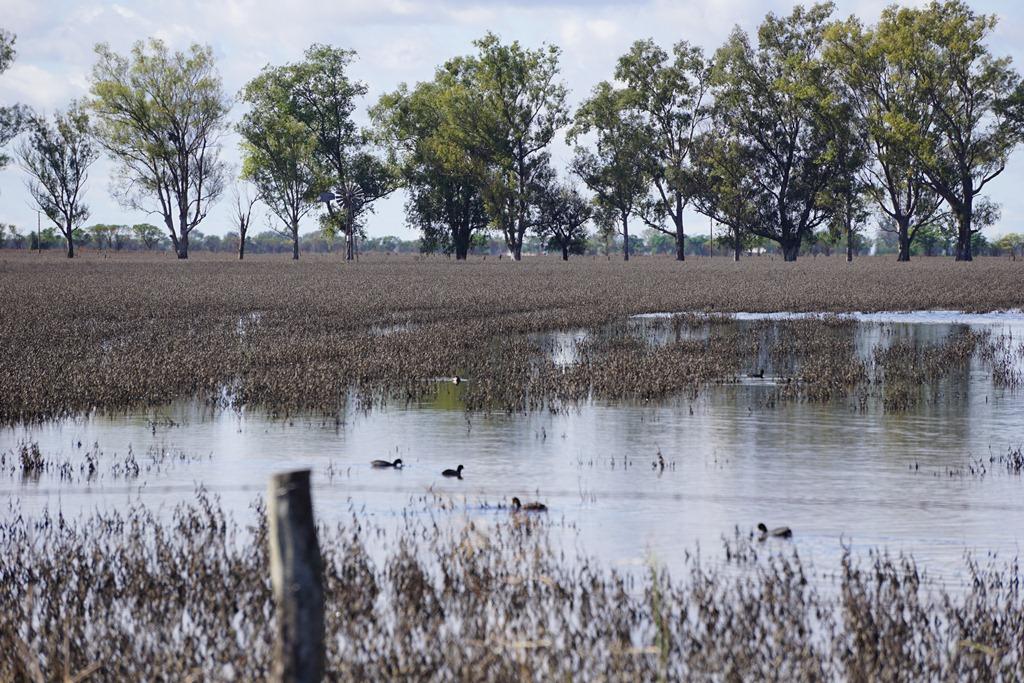 En Aguas de inundaciones