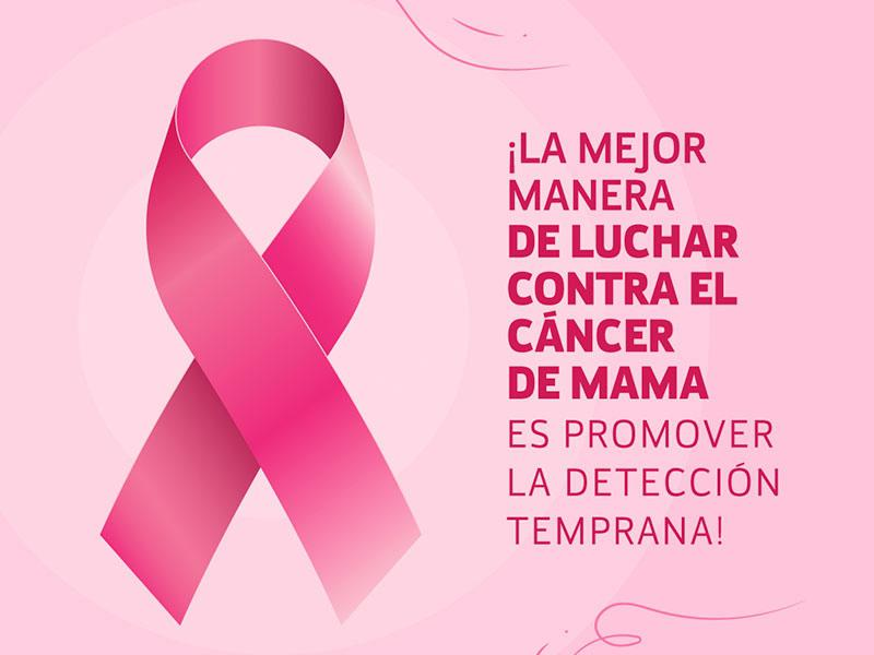 news_d_cancer-de-mama-7482